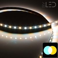 Ruban IP20 5050 - Blanc Pur + Chaud - 7,2W/m - 60 LED/m - 5m